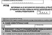 formularz pit/b